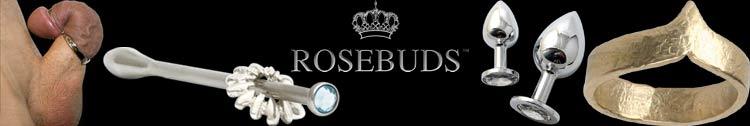 Rosebuds door Julian Snelling