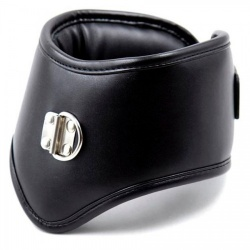 Black Padded Posture Collar with Leash - mae-sm-011