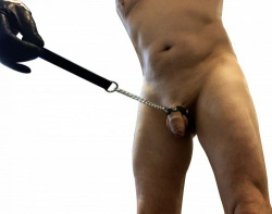 Willy Leash - leather peniscuff on chain - or-07774550000